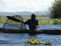 fisherman-anororo